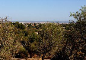 palma,Establiments,Balearic Islands,España,2 Dormitorios Dormitorios,1 BañoBaños,Villas / Casas rústicas,1005
