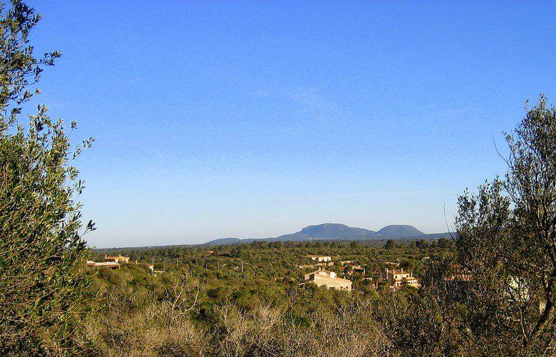 puntiro,palma,Balearic Islands,España,Terrenos / Parcelas,1025